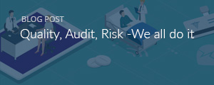 Quality, Audit, Risk: We All Do It