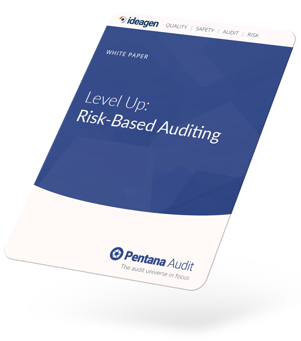 Level Up: Risk-Based Auditing White Paper